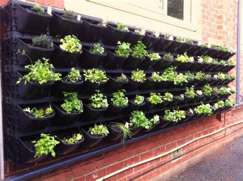 best vegetables for small garden best vegetable garden ideas for small spaces bee home