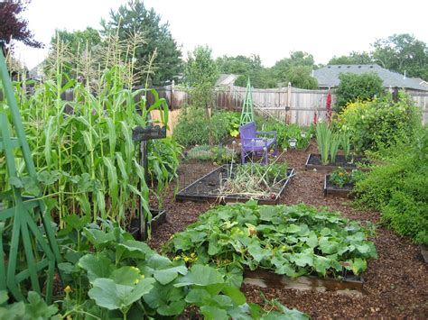 the vegetable garden pinning up a vegetable garden