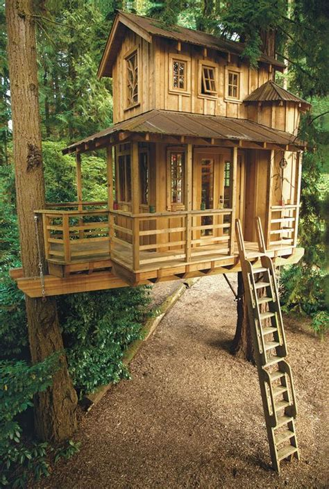 treehouse house best 25 tree houses ideas on awesome tree