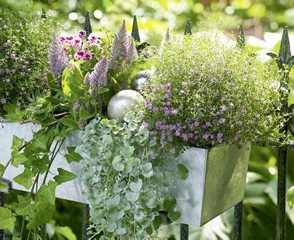 Blumenkübel Bepflanzen Vorschläge by Blumenk 228 Sten Ausw 228 Hlen Und Richtig Bepflanzen Living At