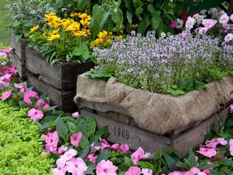 country landscaping ideas hgtv