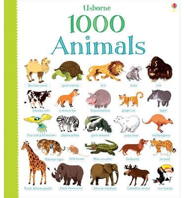 picture books about animals 1000 animals greenwell 9781409551645