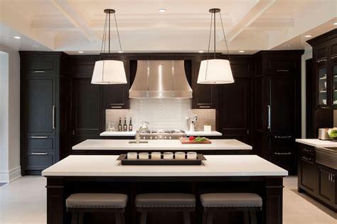 modern black kitchen cabinets black kitchen cabinets contemporary kitchen tamara magel