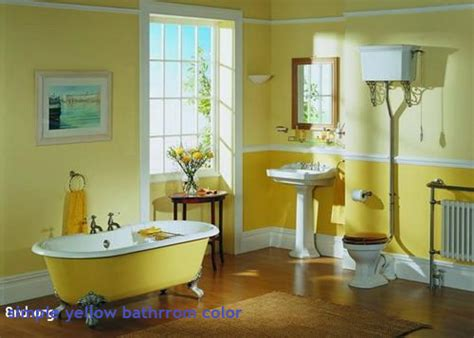 Ideas To Update Kitchen Cabinets bathroom paint colors with dark cabinets bathroom trends