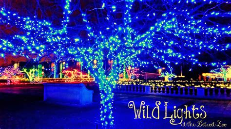 lights detroit zoo experience childhood at the detroit zoo wildlights