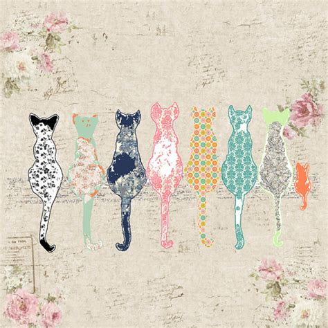 chat rideau shabby chic rideau chats
