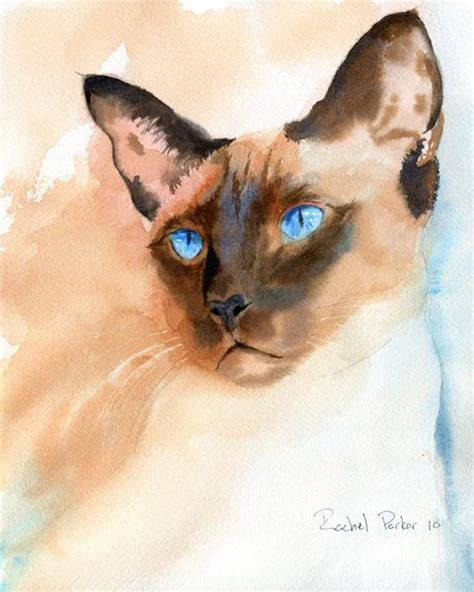 siamese cat painting really pictures siamese cat pictures