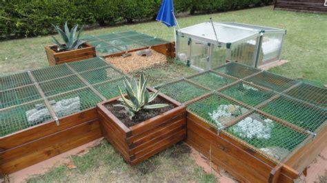 terrarium pour tortue terrestre trouvez le meilleur prix sur voir avant d acheter