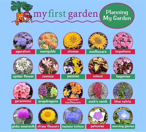 garden flower types types of flowers gardening different types
