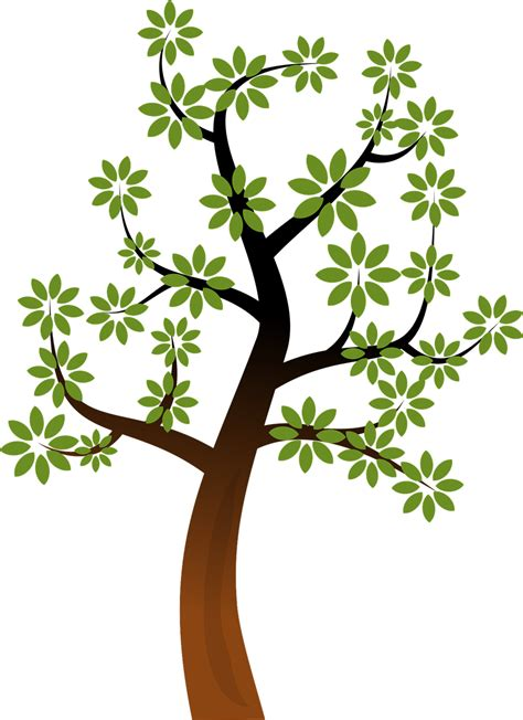 how to draw tree pictures how to draw tree 14 pics how to draw in 1 minute