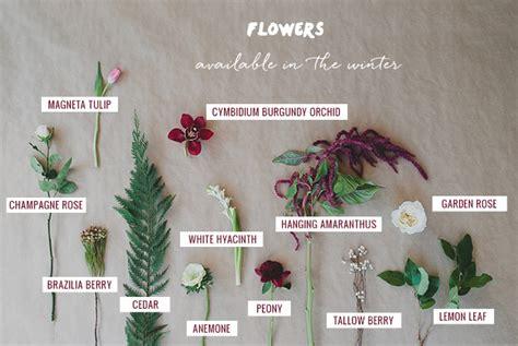 Winter Garden Fl Weather by Seasonal Flower Guide Winter Green Wedding Shoes