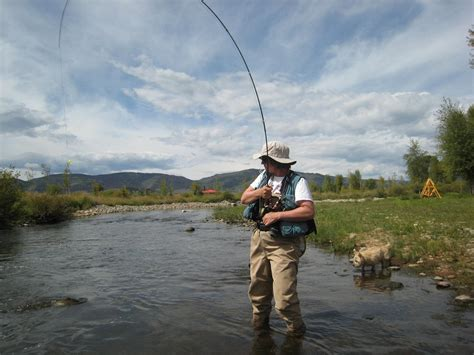 fishing trout trout fishing tips how to fly fish in small