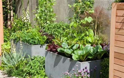 potted vegetable garden how to make kitchen garden in pots container kitchen garden