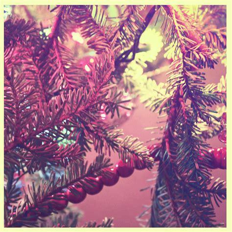 luces para el arbol de navidad precauciones con las luces para el 225 rbol de navidad en