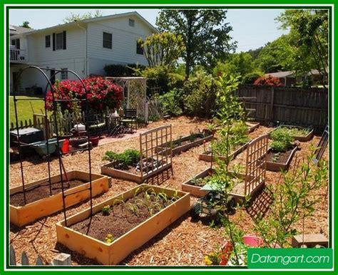 garden backyard ideas backyard vegetable garden ideas home landscaping