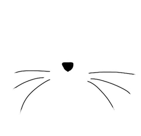 cat nose and whiskers cat whiskers clipart clipartsgram