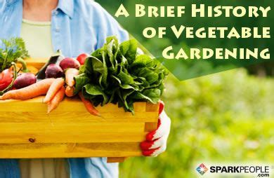 history of vegetable gardening a brief history of vegetable gardening sparkpeople