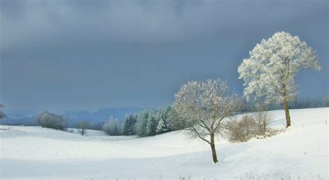 panoramio photo of paysage de neige 224 estal 46 janvier 2010