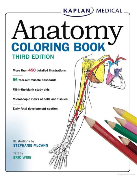 anatomy picture book anatomy coloring book answers dental anatomy coloring
