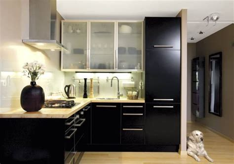 modern black kitchen cabinets kitchen ideas black cabinet collections info home and