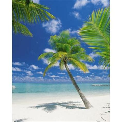 home depot wall murals komar 100 in x 72 in ari atoll wall mural 4 883 the