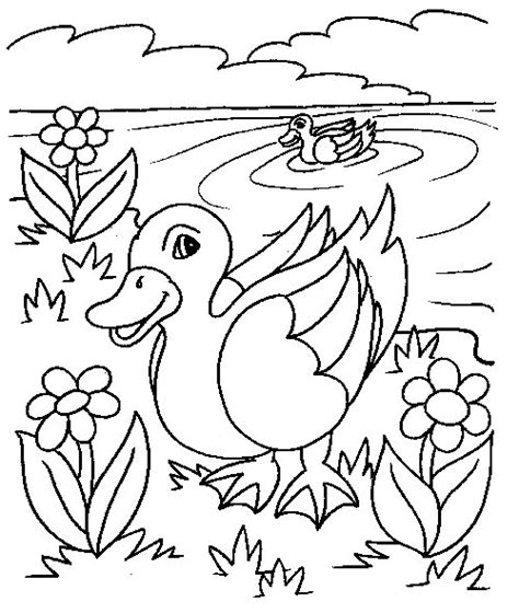 pictures to coloring book duck coloring pages coloringpages1001
