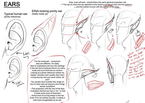 drawing tutorials drawing tutorials collection series how to draw the human