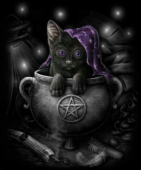 witches cat pagan wicca wiccan black cat canvas painting