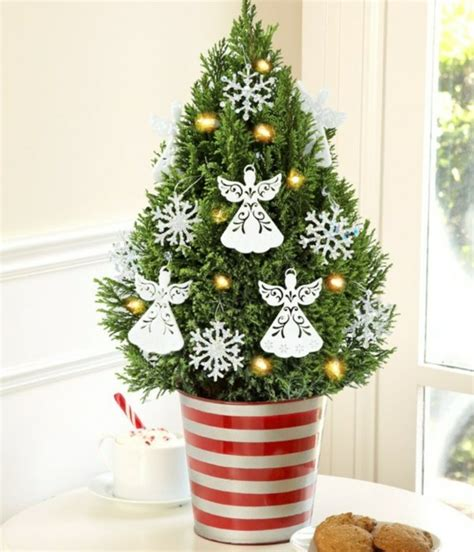 weihnachtsbaum topf weihnachtsbaum im topf festliche deko sch 246 ner zusatz