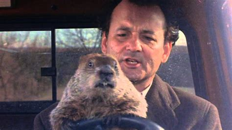 groundhog day keep the talent happy bill murray s groundhog day 2016