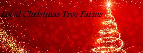 local tree lots local tree farms and tree lots near hartford vt