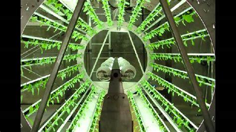 hydroponic vegetable garden kit best vertical hydroponic gardening systems