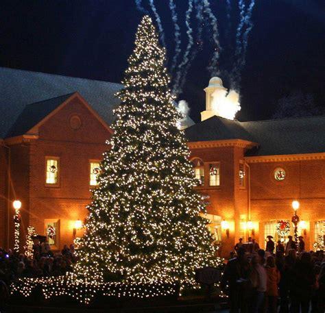 tree with big lights everest with mini lights lights etc