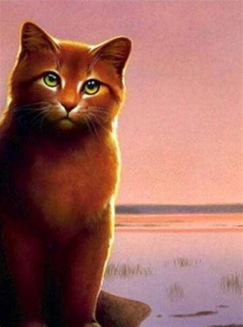 cat painting guide 17 best images about russetfur on to be cats