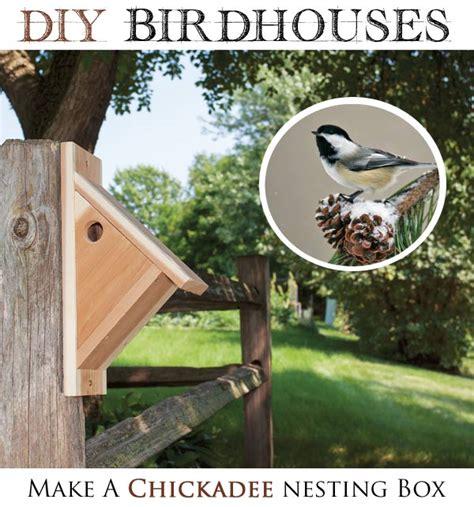 chickadee house plans black capped chickadee house plans house design plans