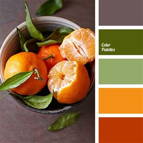 orange and color 25 best ideas about orange color palettes on