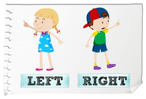 left right opposite adjectives left and right vector free