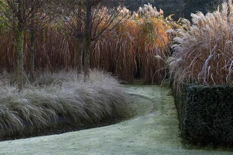Der Garten by Der Garten Im Winter Gartentechnik De