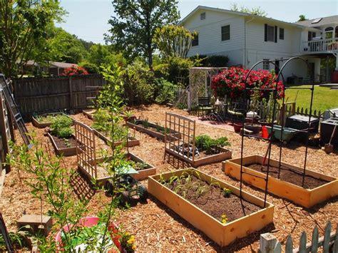 backyard decorating ideas for backyard vegetable garden ideas decorating clear