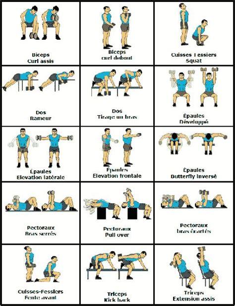 les 25 meilleures id 233 es concernant musculation avec halt 232 res sur plan d entra 238 nement