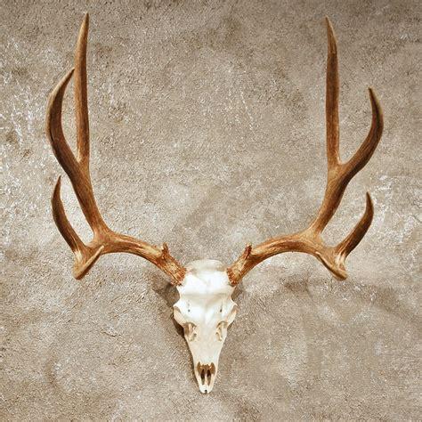 deer antler mule deer antler mount 10398 the taxidermy store