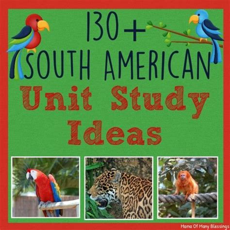 south american crafts for 13 best images about forest theme on