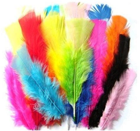 feather crafts for coloured feathers for crafts children s craft supplies