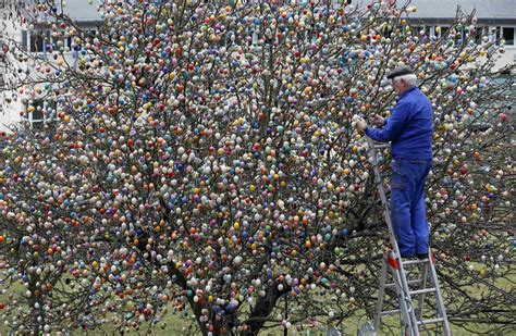 german trees decorated this german family spent more than 2 weeks decorating a
