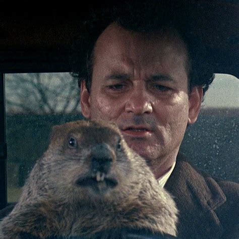 groundhog day where to groundhog day musical actually happening in 2017 vulture