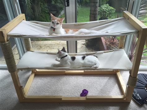 Create 3d Model Of Your House build bunk bed hammocks for your cats make