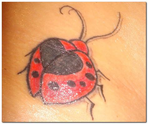 ladybug tattoo designs pictures 171 unsorted 171 tatto on body