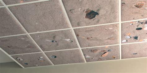 faux plafond en dalle 60x60 224 pau model devis travaux plomberie soci 233 t 233 okdqn