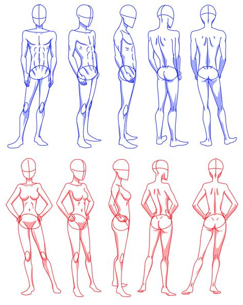 how to draw bodies rotation by flipfloppery on deviantart