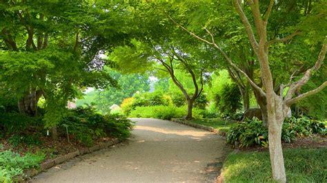 lewis botanical gardens lewis ginter botanical garden in richmond virginia